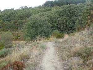 Grateful path