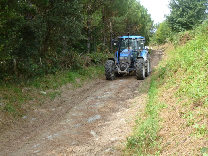 And when the path takes me back to the countryside, I must share with large tractors moving hay on the path