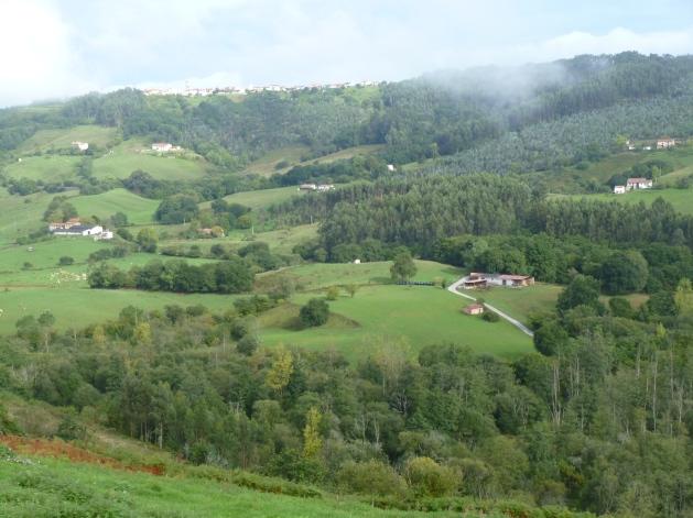 Countryside near Buelna