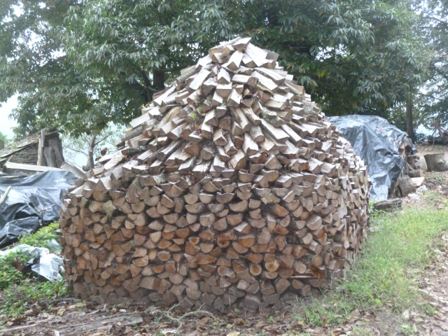 A unique way to stack firewood