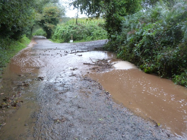 New rivers run through our Camino path